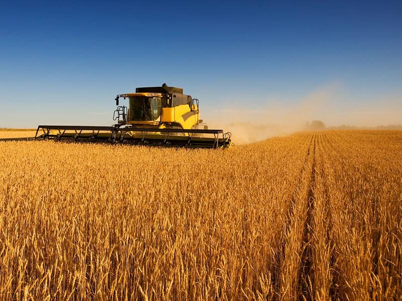 Как взять в кредит комбайн зерноуборочный как взять кредит в сбербанке для квартиры